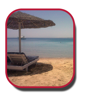 Hurghada - full of varieties